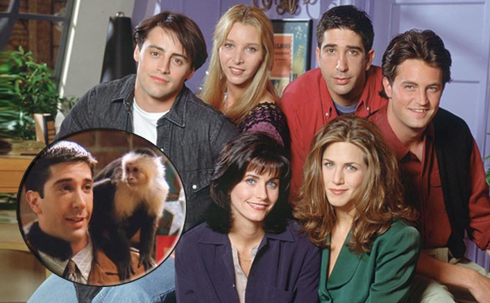 Friends: Remember Marcel The Monkey? THIS Cast Member Wasn't Fond Of It & We Are NOT Fine!