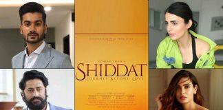 Radhika, Mohit, Diana, Sunny in 'love story'
