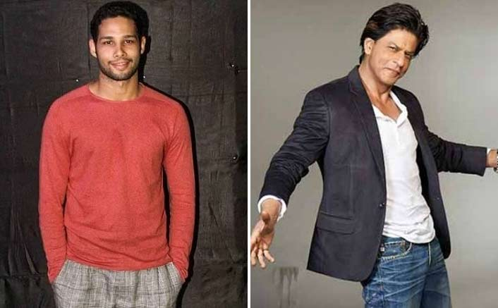 Siddhant Chaturvedi: Shah Rukh Khan Made Big At The Age Of 26, I Aspire To Do The Same!