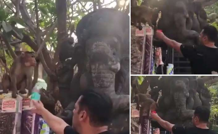 When Salman Khan offered water to a monkey