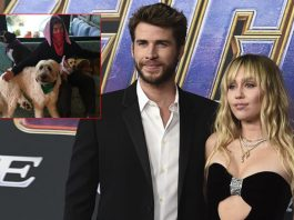 Miley keeping animals Liam saved from house fire