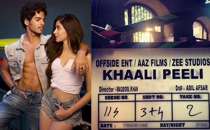 Big Brother Shahid Kapoor Sends Wishes As Ishaan Khatter's Khaali Peeli Goes On Floors