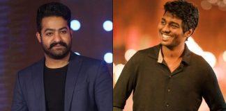 Atlee Kumar To Have Jr.NTR In His Debut Telugu Directorial?