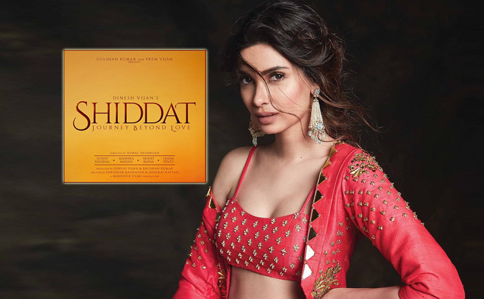 """Diana Penty On Shiddat: """"This Is The First Time I Am Doing An Intense Love Story"""""""