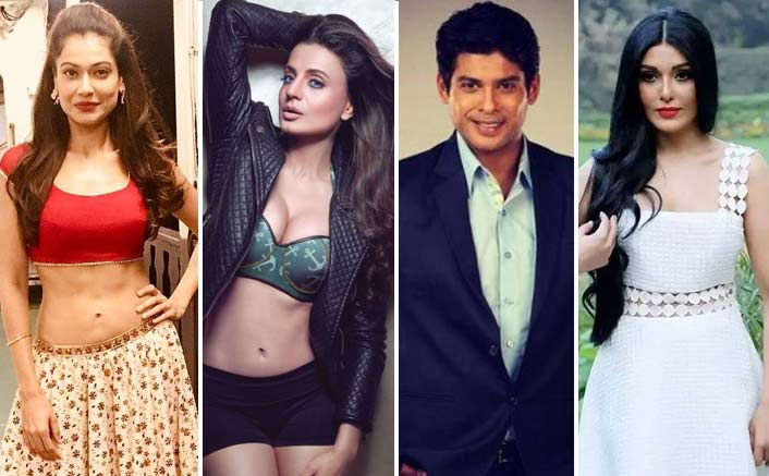 Ex Bigg Boss Contestant Payal Rohatgi Calls Out Ameesha Patel, Koena Mitra, Siddharth Shukla For Being Jobless