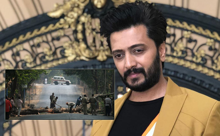 Riteish: Each tree belongs to citizens as much as to govt