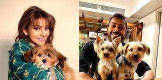 Did Hardik Pandya gift Urvashi Rautela a puppy?