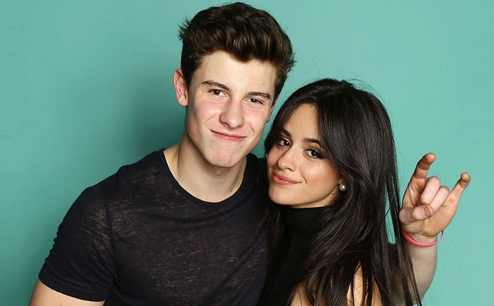Camila Cabello & Shawn Mendes Will Do THIS If They Win Grammys & It Has To Do With Underwears!