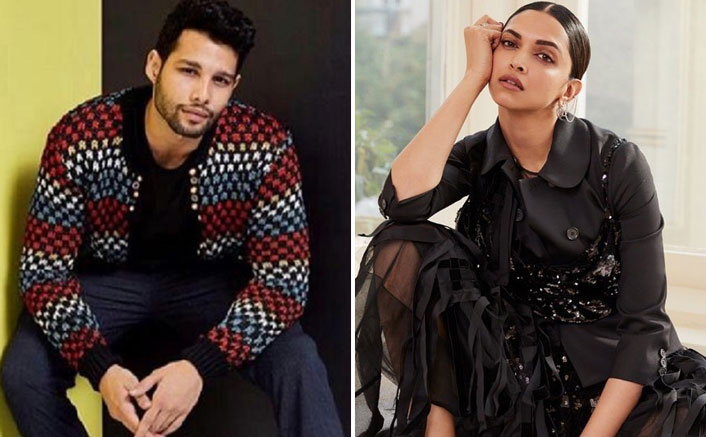 Siddhant Chaturvedi AKA MC Sher To Come Up With Deepika Padukone For Dharma's Next?