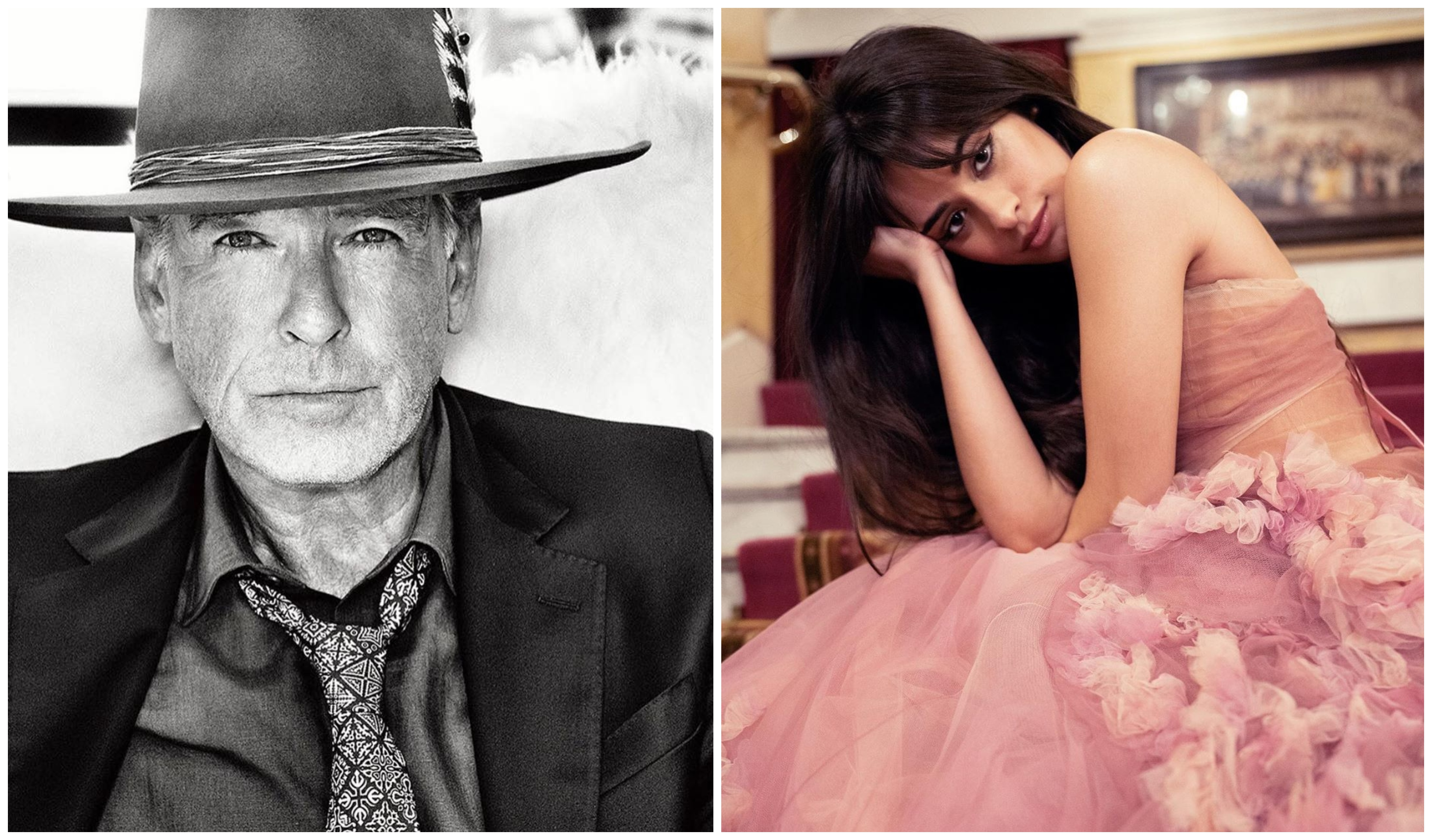 WOW! Camila Cabello's 'Cinderella' Finds Its King In Pierce Brosnan