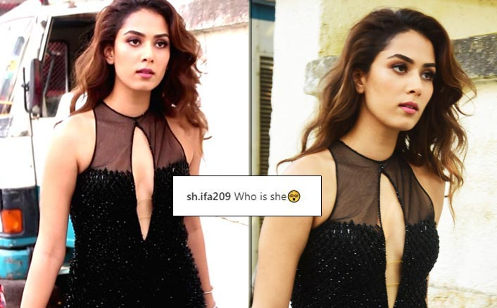 """Shahid Kapoor's Wife Mira Rajput Spotted In Glamorous Avatar, Netizens Ask """"Who Is She?"""""""