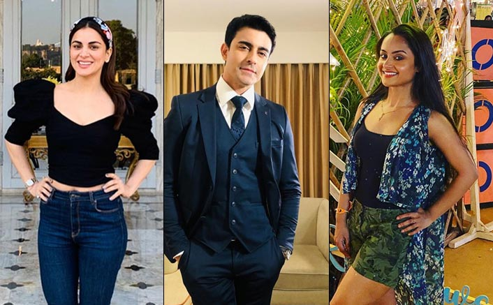 Small screen stars have big plans for New Year