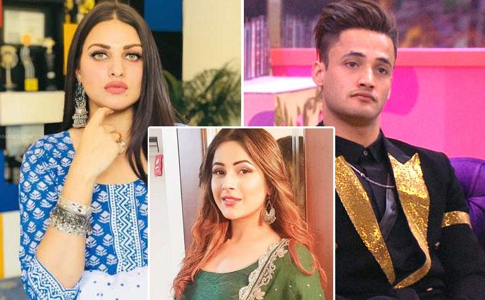 Bigg Boss 13: Not Asim Riaz, Himanshi Khurana Reveals REAL Reason Behind Broken Marriage & It's Shehnaaz Gill