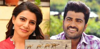 Samantha Akkineni & Sharwanand's Next Titled As 'Jaanu', First Looks Poster Looks Impressive