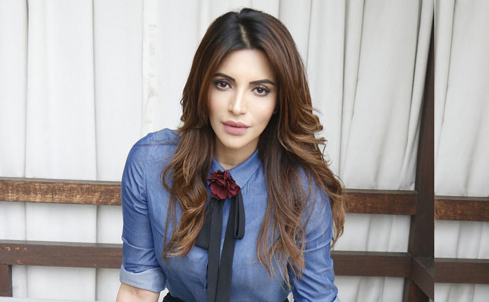 Shama Sikander: Republic Day is a day to celebrate our nation