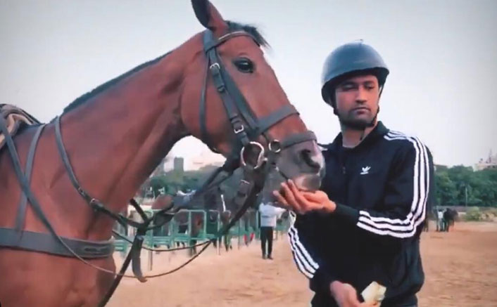 Vicky Kaushal Spotted Petting A Horse! Has He Started The Prep For Takht As Well?