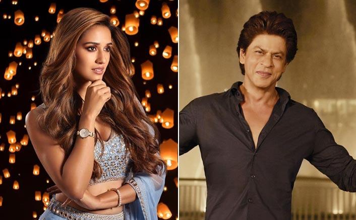 WHAT! Malang Star Disha Patani Has Not Met Megastar Shah Rukh Khan Yet? Reveals What She'll Do On Meeting Him