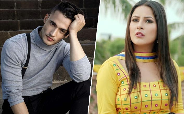 Bigg Boss 13: Not Asim Riaz, Shehnaaz Gill & THIS Contestant To Have A Swayamvar Show?