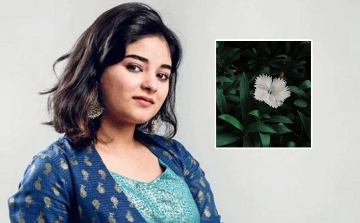 """Dangal Actress Zaira Wasim On Kashmir Situation: """" Why Do We Have To Live In World Where Our Lives & Wills Are Controlled?"""""""