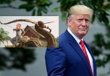 Donald Trump Shares Baahubali's Video Morphed With His Face & Expresses His Excitement To Visit India