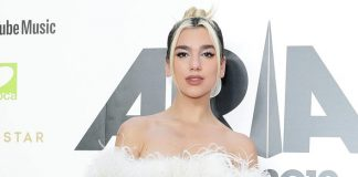 Dua Lipa chops off her damaged hair