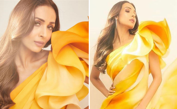 Malaika Arora Gets Malaika Arora Mercilessly Trolled For Her Latest Outfit; Trolls Call It 'Too Exposive'Trolled For Her 'Over Revealing' Attire; See Comments