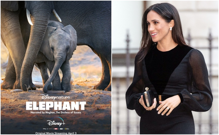 CONFIRMED! Meghan Markle To Narrate Disneynature's Elephant On Disney Plus, Trailer & Release Date Out