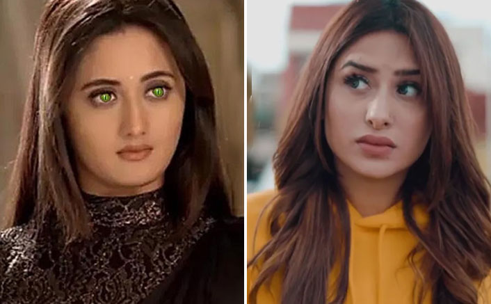 Naagin 4: CONFIRMED! Not Rashami Desai, THIS Bigg Boss 13 Beauty Was The First Choice