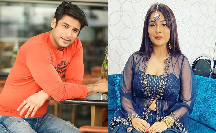 WAIT WHAT! Did This Bigg Boss 13 Contestant Just Confirm Sidharth Shukla & Shehnaaz Gill's Relationship?