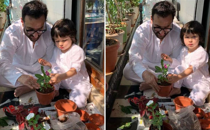 Janata Curfew: Saif Ali Khan & Taimur Get Busy Doing THIS To Make The Best Use Of Their Free Time