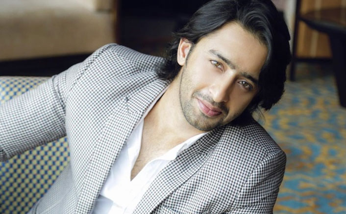 With Shoot's Being Stopped Due To The Coronavirus Scare Actor Shaheer Sheikh Lauds The Move