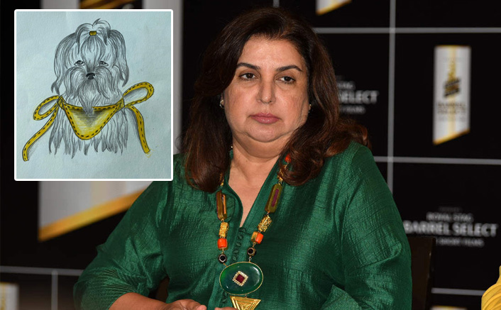 COVID-19: Farah Khan's daughter sells her sketches for stray animals
