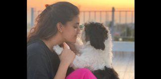 Keerthy Suresh Enjoys Sunset With Her Pet Dog Amid Quarantine