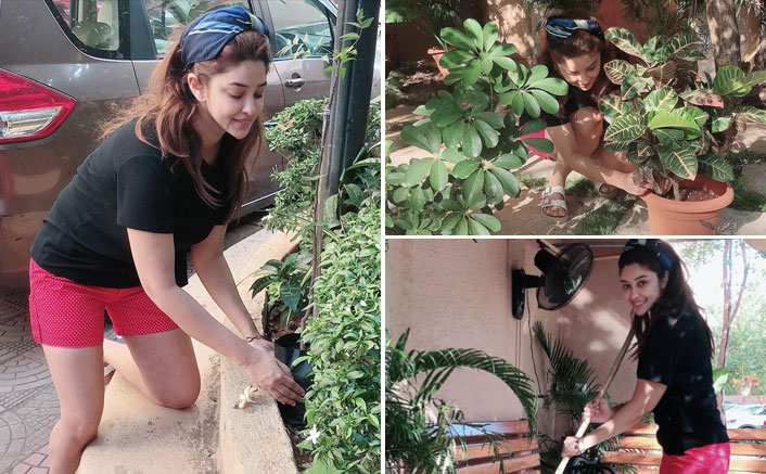 """Payal Ghosh Starts Gardening During The Lockdown, Says, """"I Never Got The Time Once I Started Acting"""""""