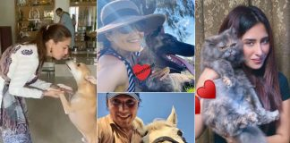 Madhuri, Preity shower love on furry friends on National Pet Day