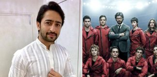 Mahabharat Fame Shaheer Sheikh Doesn't Prefer Watching Money Heist For THIS Reason