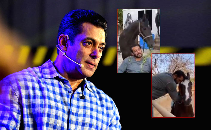 Salman Khan Brings Together Former Bigg Boss Contestants Through This Latest Video