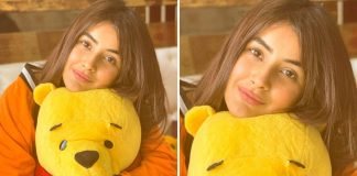 Bigg Boss 13 Contestant Shehnaaz Gill's Latest Pic Will Make You Miss The 'Punjab Ki Katrina Kaif'