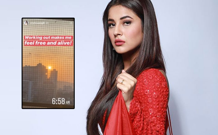 Shehnaaz Gill Is Doing THIS At 6 In The Morning & It Will Leave You Surprised!
