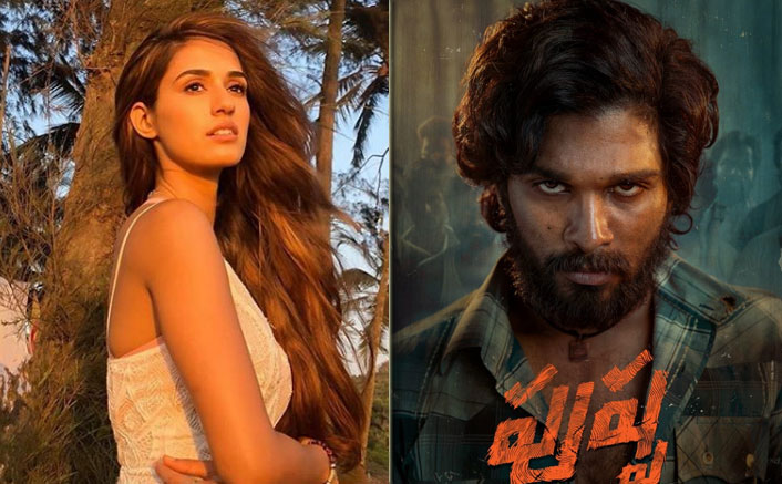 Disha Patani Roped In For Allu Arjun's Action-Thriller Pushpa?
