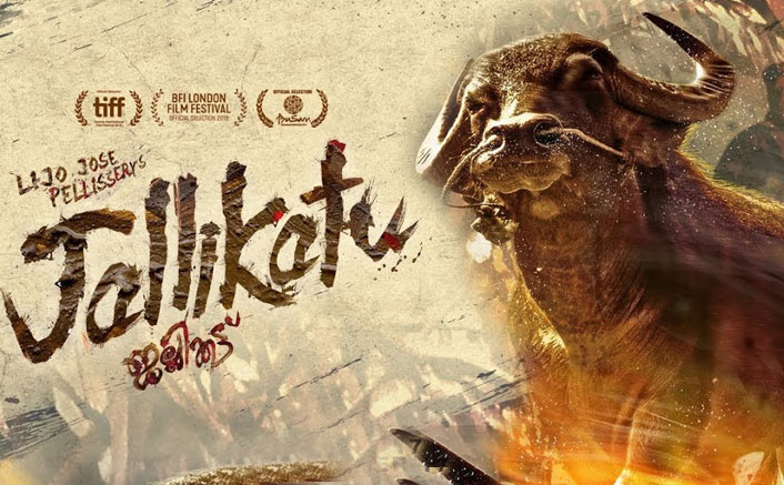 Koimoi Recommends Jallikattu (Lockdown Watch): Lijo Jose Pellissery's Masterpiece Starring Antony Varghese Is A Phenomenon That Words Can't Do Justice To