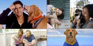 Must-watch titles starring our furry best friends