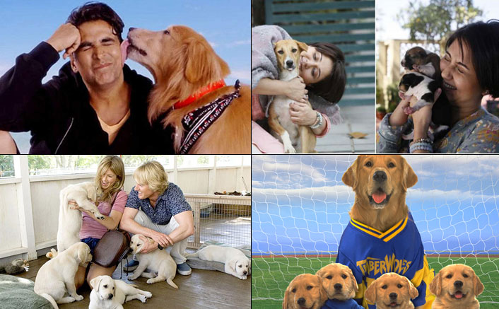 From Jennifer Aniston's Marley & Me To Akshay Kumar's Entertainment - 6 'Paw'dorable Must Watch Films!