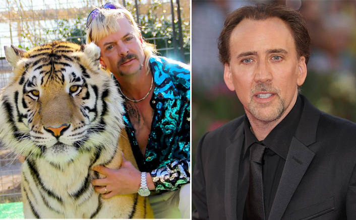 Nicolas Cage All Set To Portray Tiger King Fame Joseph Allen Maldonado-Passage AKA Joe Exotic On Screen