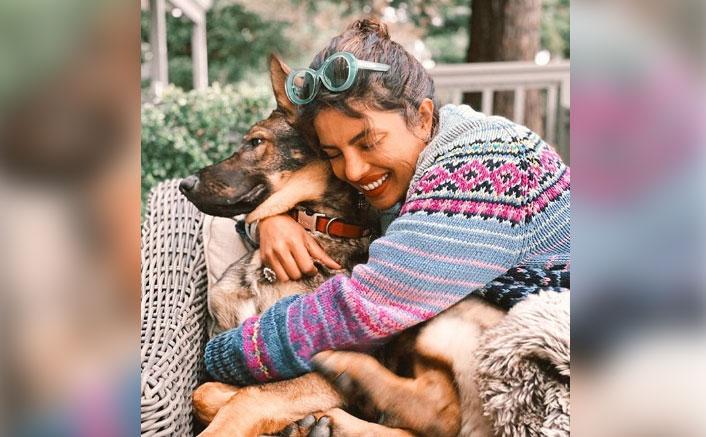 Priyanka Chopra Is Pretty Much Sure That Her Doggo Loves Her Cuddles!