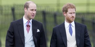 Reunion Of Brothers: Prince Harry And Prince William Are Back In Touch