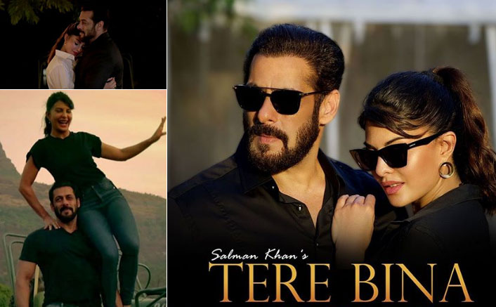 Salman Khan & Jacqueline Fernandez's Tere Bina OUT! It's For All The Lovers Away From Each Other During This Lockdown