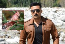 Suriya Starrer Kaappaan Becomes Hottest Topic Of Discussion Amongst Netizens Following Locust Attack In Various Parts Of India
