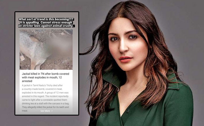 "Anushka Sharma Reacts To Killing Of Jackal In Tamil Nadu: ""What Sort Of Trend Is This Becoming?"""