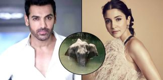 Anushka Sharma To John Abraham Celebs Express Their Anger Over Brutal Killing Of A Pregnant Elephant In Kerala